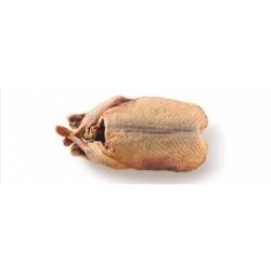 Eendenkarkas